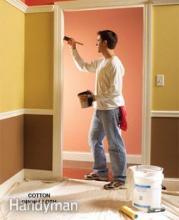 Professional Paint Job